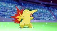 Cyndaquil de May