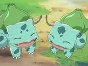 Bulbasaur de Ash y May
