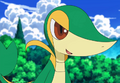 Snivy pic.png