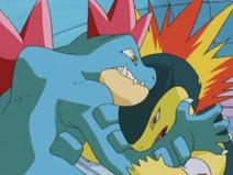 Pokémon Trainer School Typhlosion Feraligatr