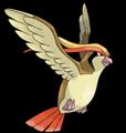 Pidgeot.png