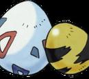 Pokemon Egg