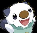 Oshawott (Pokémon)