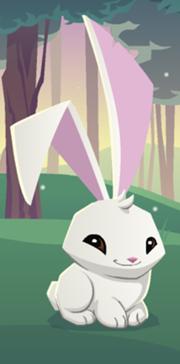 MxcpMxcp180px-Bunny