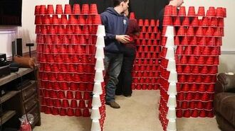 INSANE CUP FORT