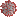 Coronavirus-icon