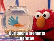 QueBuenaPreguntaDorothy