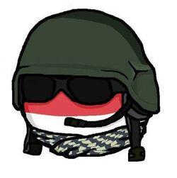Wojsko Polskieball