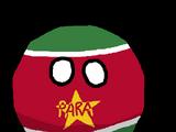Paraball