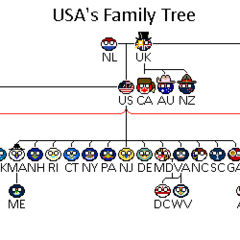 USA's family tree. The black lines represent biological relationships and the red adoptive relationships.