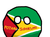 Potaro-Siparuniball