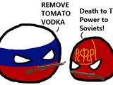 Russian Revolution (1905)