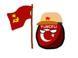 Tunceliball