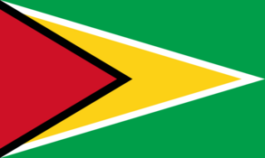 FlagGuyana