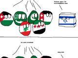 1948 Arab-Israeli War