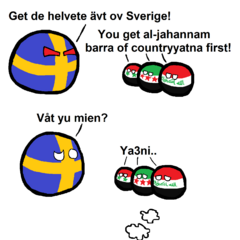 Sweden's Immigrants