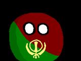 Punjabball