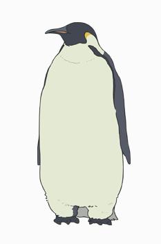Chara pengin