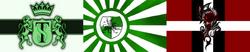Paragonflag