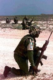 Nigerian troops in Somalia