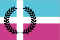 The Axis Accord flag