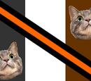 Cat Republic
