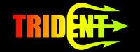 Trident Flag