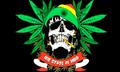 United Hoods Flag.png