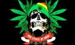 United Hoods Flag