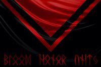 Valkyrie Flag