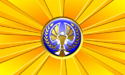 Orange Defense Network Flag