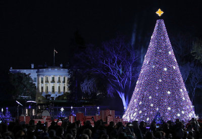Washington D.C. Christmas Tree