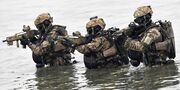 German-special-forces