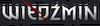 Wiedźmin logo