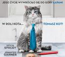 Jak zostać kotem