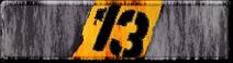 Projekt 13-1-