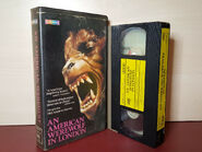 An American Werewolf In London - PRE CERT - Horror - PAL VHS Video Tape (H165)