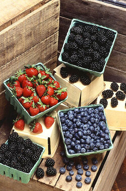 Berries (USDA ARS)