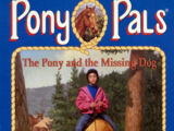 The Pony and the Missing Dog