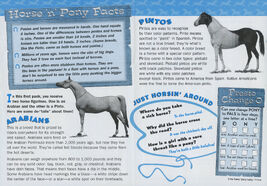 Pony Puzzles Plus club newsletter inside