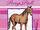 Pony Pals: How to Draw Ponies