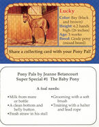 SS1 Lucky collecting card front and back Pony Pals The Baby Pony