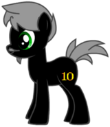 Douglas' Pony Form