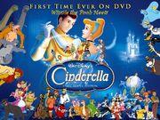 Winnie the Pooh meets Cinderella