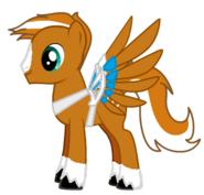 Dusty pony