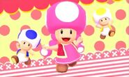 Toadette and Toad Brothers