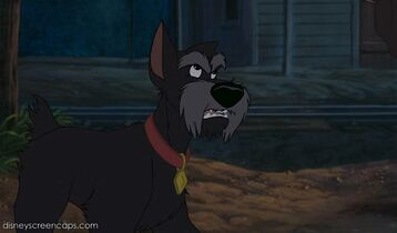 Jock (Lady and the Tramp)