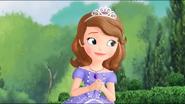 Princesa Sofia by Lady Pink (8)