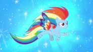 Rainbow Dash rainbowfied