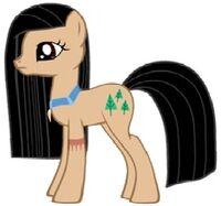 Pocahontas' Pony Form